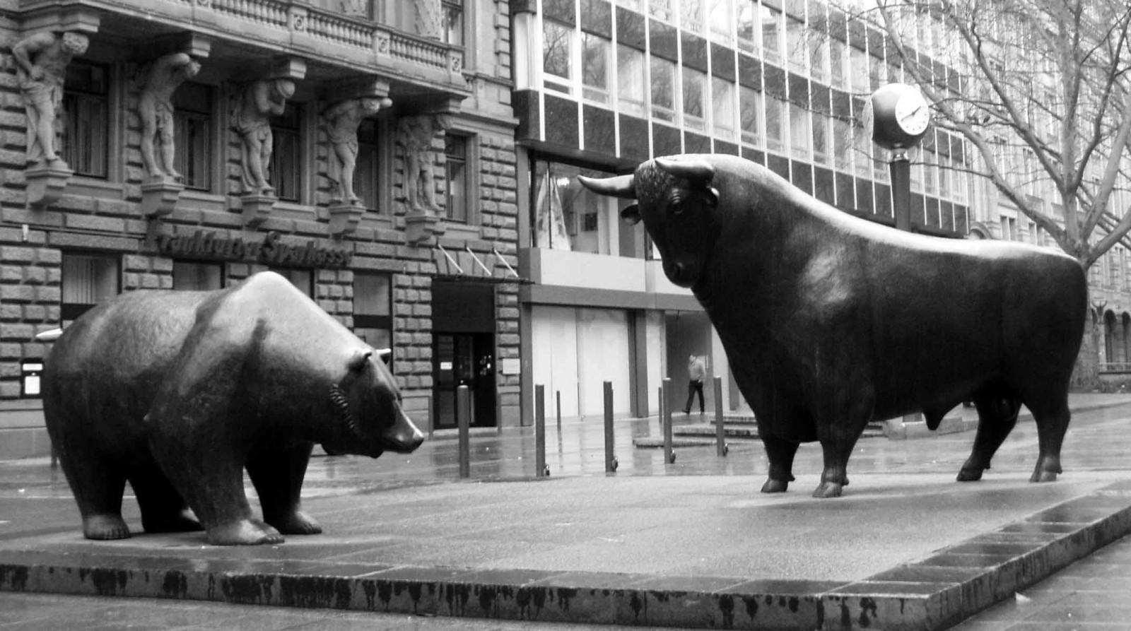 Медвежий рынок Форекс: что это, виды, способы определения