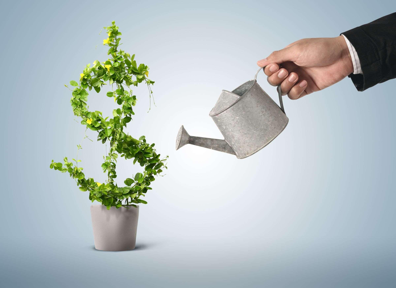 Управление портфелем ценных бумаг в Форексе