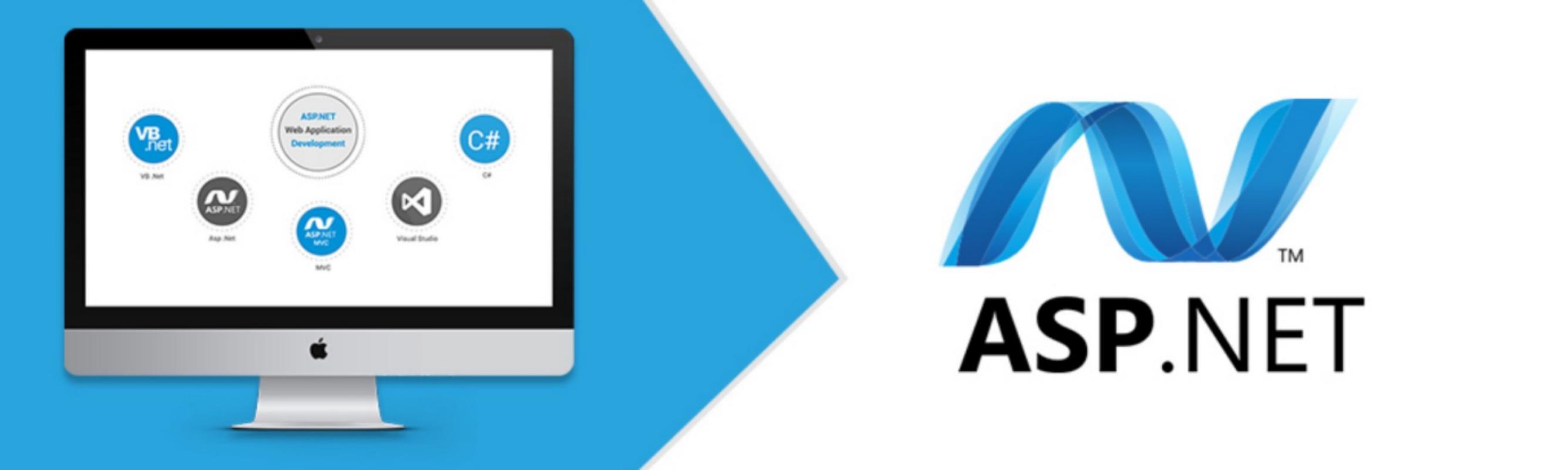 How to Hire an Asp.Net Developer
