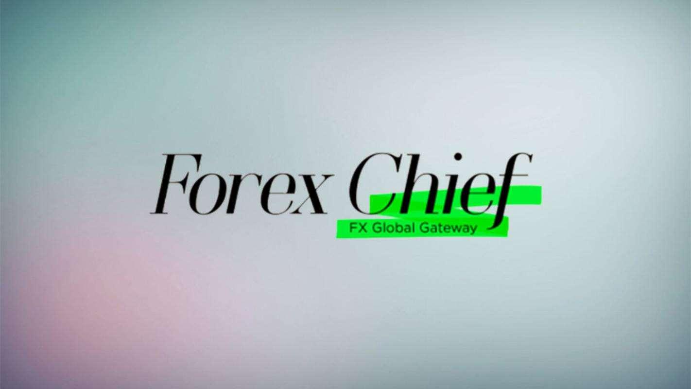 Объективный обзор ForexChief